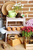 foto of flower pots  - Flowers in pot on stepladder - JPG
