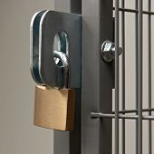pic of hasp  - Padlock on a hasp securing a wire fence room - JPG