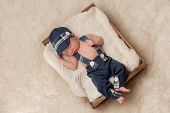 picture of newsboy  - Overhead shot of an eight day old newborn baby boy wearing a blue newsboy cap suspenders and pants - JPG