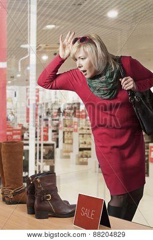 Woman Window Shopper
