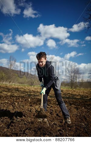 Teenager Boy With A Hoe Sowing Potatoes