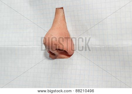 The Nose Isolated On A White Background Checkered