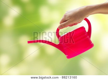people, gardening and profession concept - close up of woman or gardener hand holding watering can over green background