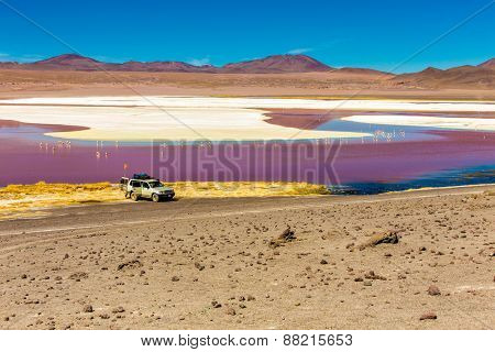 Red Lagoon (Lagoa Colorada) in Bolivia, South America