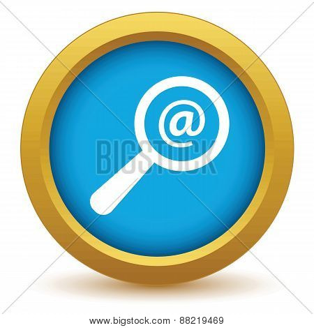 Gold search mail icon