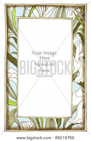 Frame Lily Flower Color