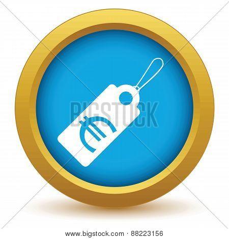 Gold euro tag icon