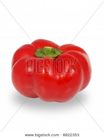 Pepper Vegetable Sweet Closeup