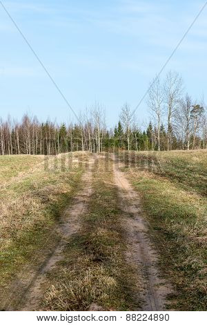Empty Country Road In Spring