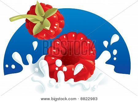 Raspberries splashing in milk or yogurt