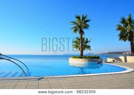 Endless Swimming Pool And Palm Tree