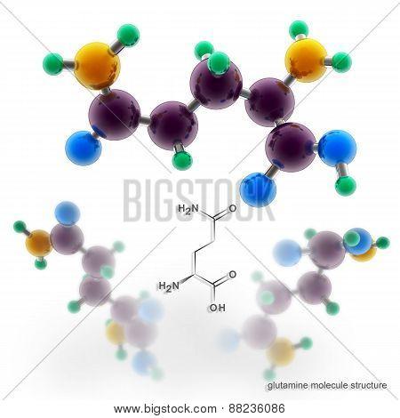 Glutamine Molecule Structure