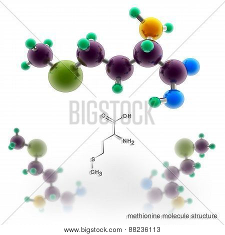 Methionine Molecule Structure