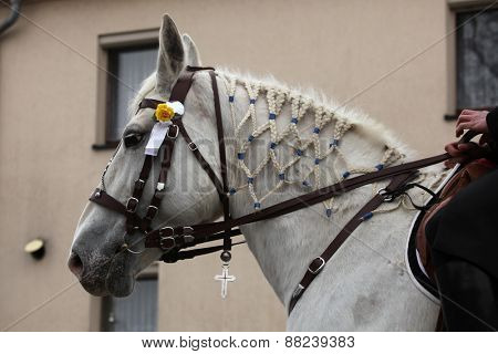 CROSTWITZ, GERMANY - APRIL 8, 2012: Decorated horse attend the Easter ceremonial equestrian procession in the Lusatian village of Crostwitz near Bautzen, Upper Lusatia, Saxony, Germany.