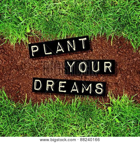 plant your dreams text on top of dirt and grass