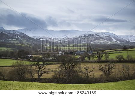 Countryside Agricultural Landscape With Snow Covered Mountain Range In Distance