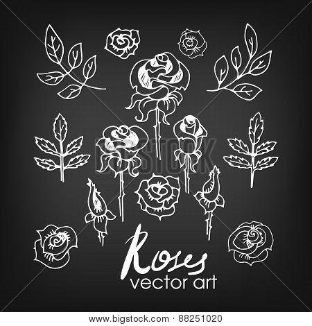 Set of Vintage Floral Hand-Sketched Elements. Flowers, Floral El