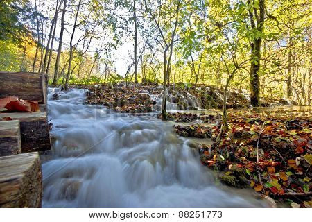 Flowing Stream In Plitvice Lakes National Park
