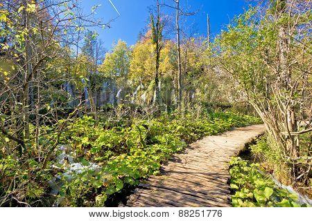 Plitvice Lakes National Park Paradise Walkway