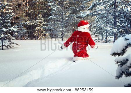 Boy Dressed As Santa Walks In Forest