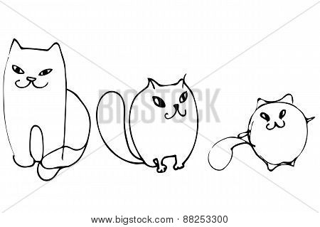 Vector Sketch Of Three Beautiful Kittens