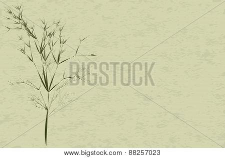 Tree Bush.