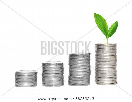 Savings, Increasing Columns Of Silver Coins And Green Plant