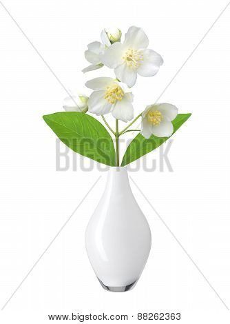 White Flower (jasmine) In Vase Isolated On White Background.