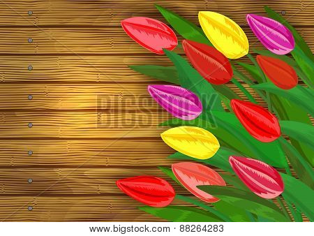 Colorful Tulips On Wooden Background