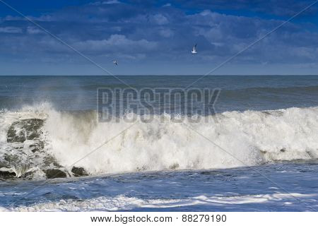 Breaking Waves And Gulls