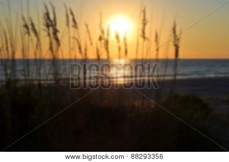 Background Blur Of Sunset