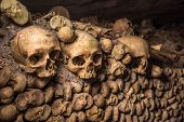 image of catacombs  - Highly detailed image of Skulls and bones in Paris Catacombs - JPG