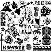 picture of hawaiian girl  - Vector Vintage set of Hawaiian icons and symbols - JPG
