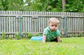 stock photo of crawling  - Cute baby crawling in the grass near wooden fence - JPG
