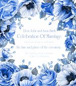 image of blue rose  - Blue poppies and roses - JPG