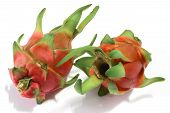 picture of dragon fruit  - Dragon fruit for eating as a snack  - JPG