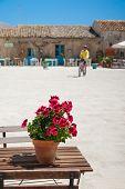 image of geranium  - View of the main square in Marzamemi - JPG