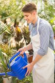 stock photo of flower shop  - Young handsome male florist watering flowers in flowers shop - JPG