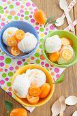 stock photo of kumquat  - Vanilla ice cream with fresh kumquats in colorful bowl - JPG