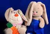 pic of stuffed animals  - Two soft fluffy stuffed rabbit sitting on a blue background - JPG