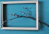 pic of pussy-willows  - pussy willow branch in wooden frame on blue wood textured background - JPG
