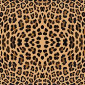 stock photo of leopard  - leopard print pattern skin - JPG