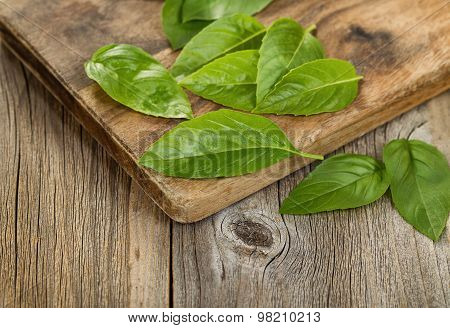 Close Up Fresh Basil Leafs On Rustic Serving Board