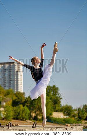 Ballerina In Tutu Dancing On The Waterfront.