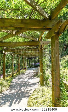 Walkway Under Arbor In Garden