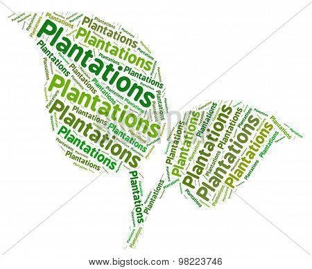 Plantations Word Shows Ranch Estate And Words