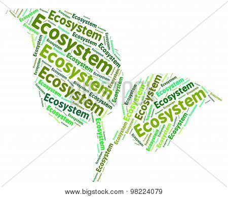 Ecosystem Word Indicates Earth Day And Biosphere