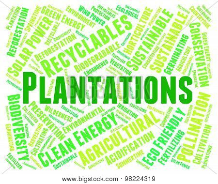 Plantations Word Means Agriculture Ranch And Text