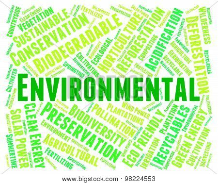 Eco Friendly Shows Environmental Word And Eco-friendly