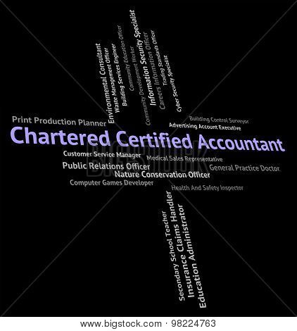 Chartered Certified Accountant Shows Balancing The Books And Accountants